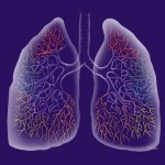 go-ahead-and-breathe-lungs-catherine-twomey
